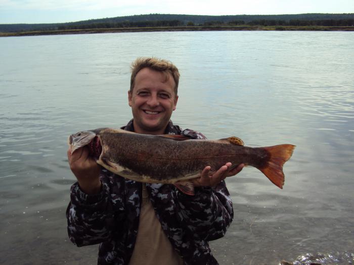 Рыбалка хариус на ангаре