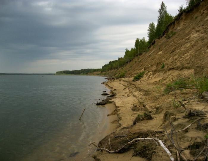 Дубровинский берег №1