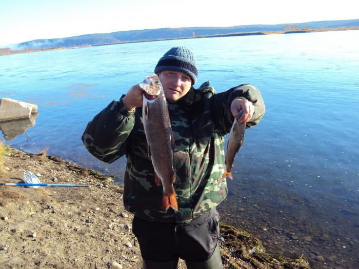 Рыбалка на ангаре иркутской области