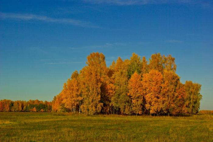 Золотая осень_2
