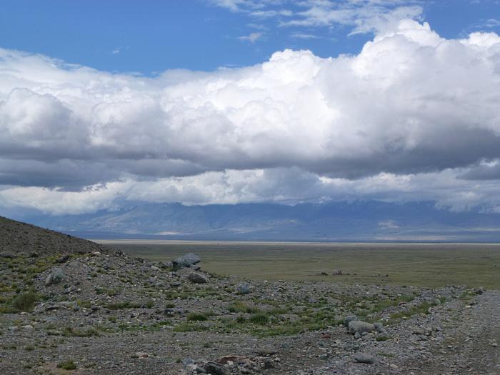 Алтай. Курайская степь