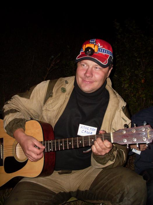 гитарист)