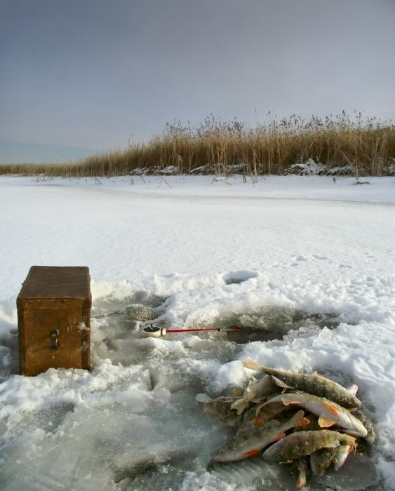 диагностический центр погода бердск на 3 страшные истории