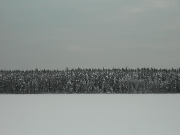 озеро Поганое