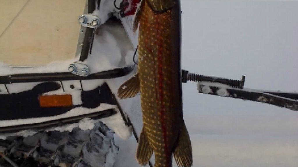Рыбалка на Лобазных озерах