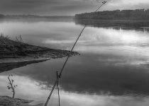 Геометрия рыбалки.