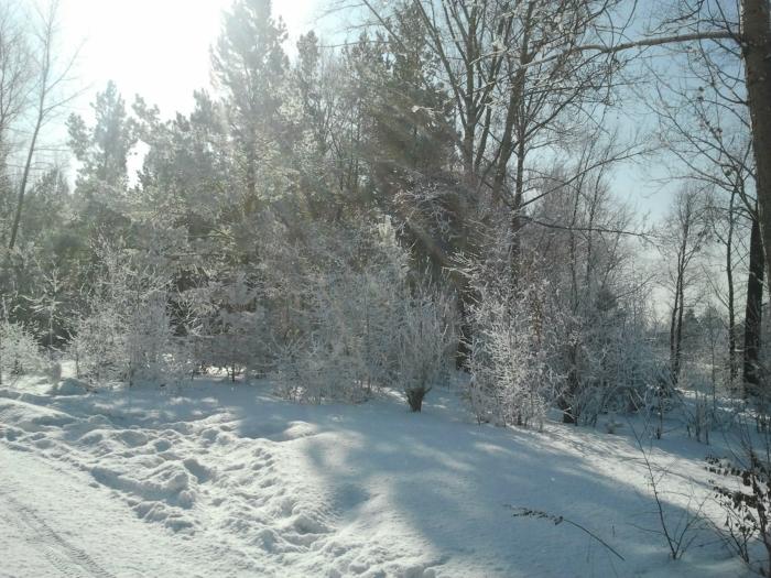 Зимой на берегу