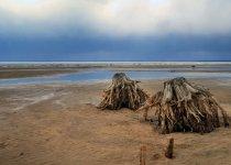 На берегу Обского водохранилища.Апрель 2012г