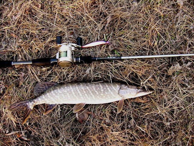 Рыбалка сегодня была трудовая.