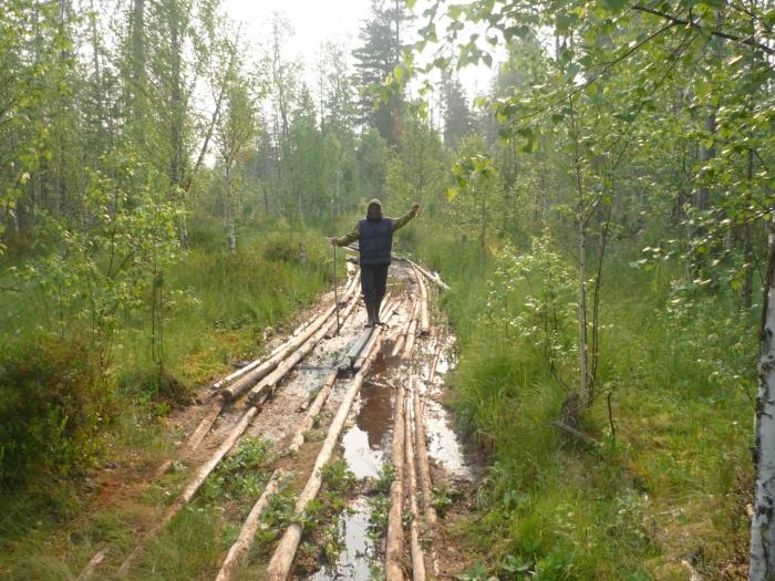 Дорога до озера в ТО