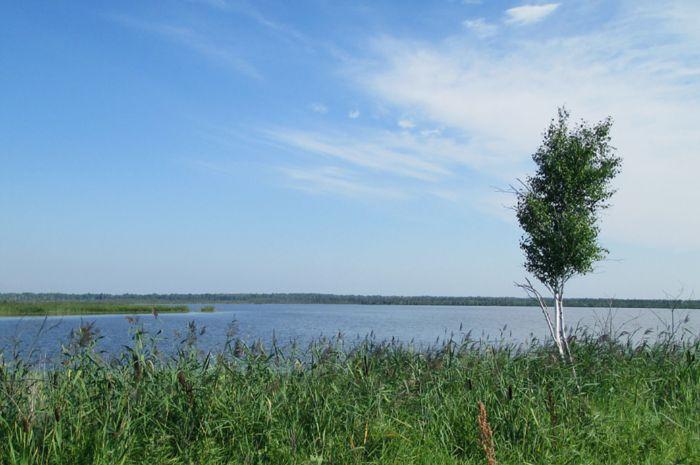 Большое Никановское озеро