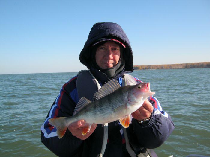 Золотая рыбка с ОВХ - 50л бензина и весь день поиска.