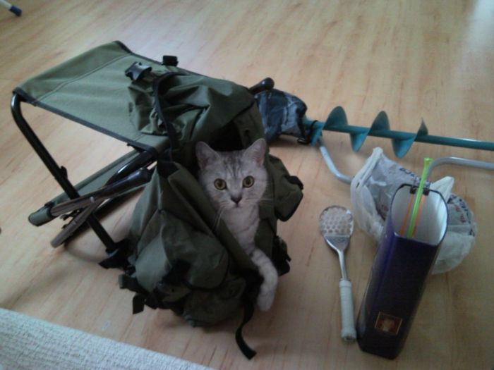 Собираемся на рыбалку