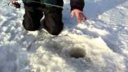Ловля окуня зимой на чёрта (балду)