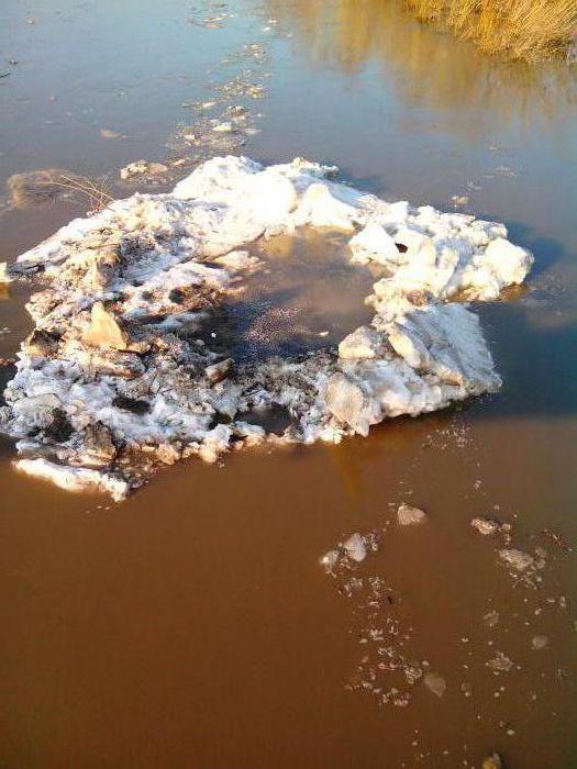 остатки ледохода на Ине.