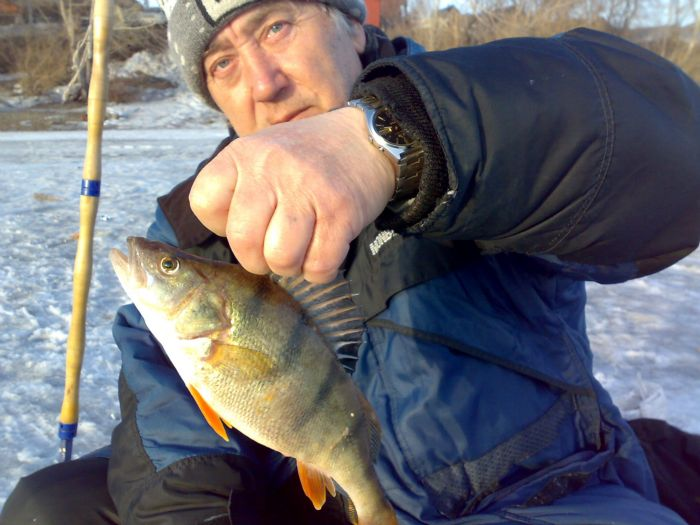 Фион шадринск форум отчеты о рыбалке