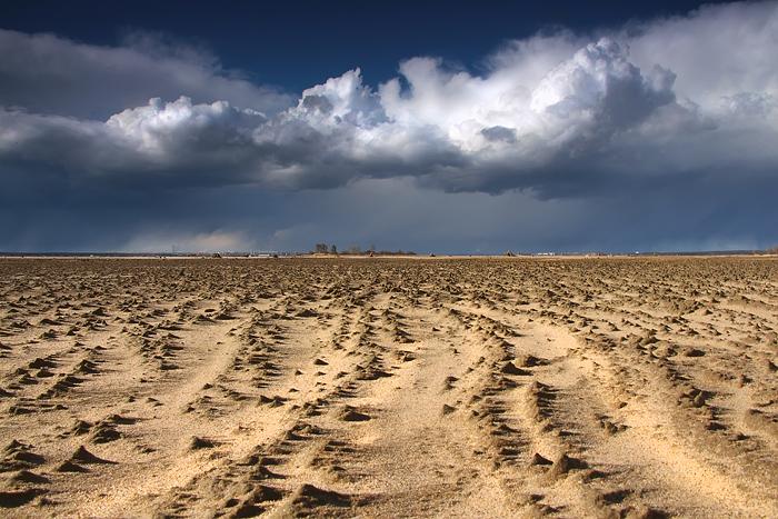 Район Умовского острова (почти марсианские хроники)
