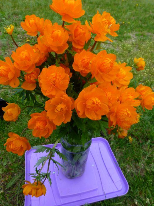 Парни подарили нам цветочки на рыбалке , романтично так )))