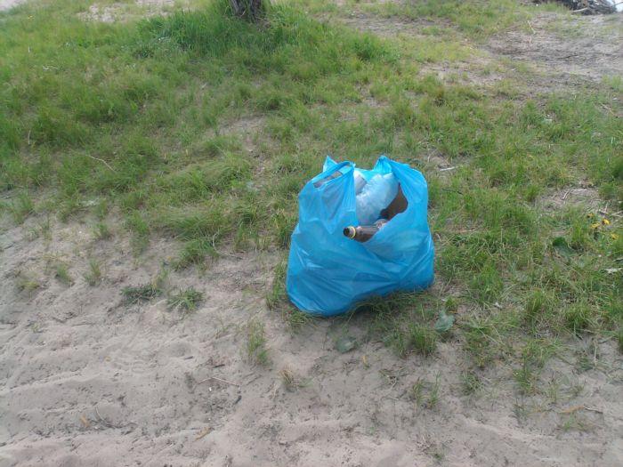 Давайте хоть пакет мусора каждый соберет и вывезет