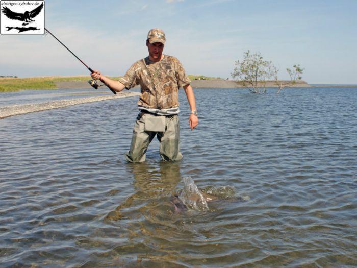 Рыболовные места в кировском районе