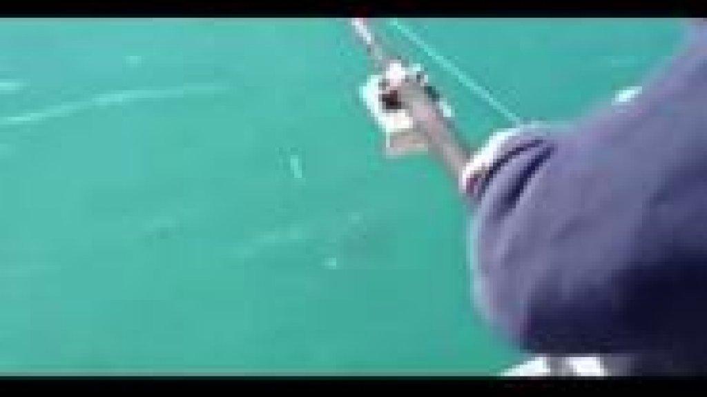 рыбаки и касатка