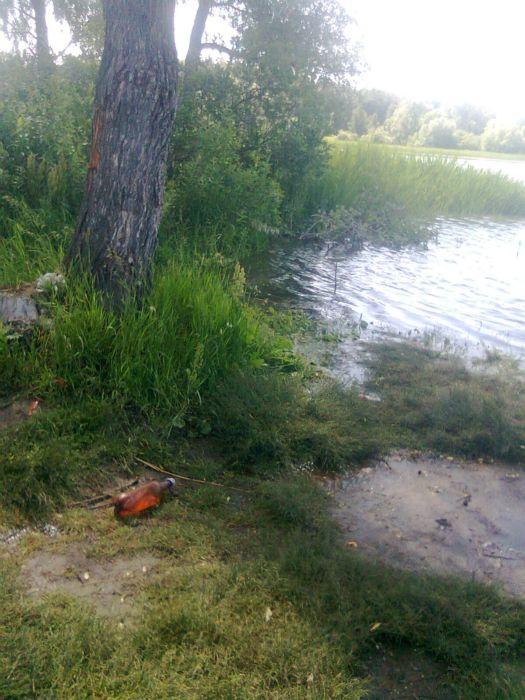 Раньше до берега метров 15 было от этого дерева