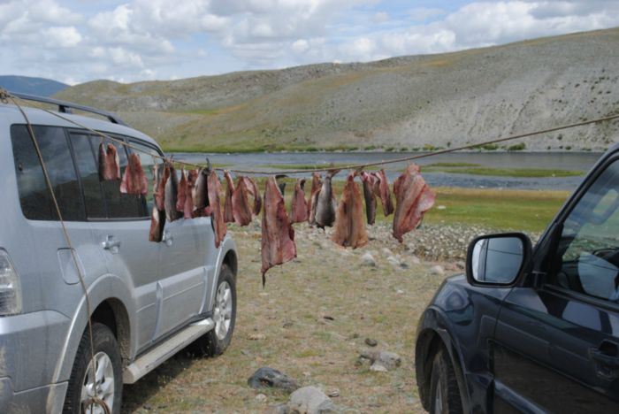 Монголия 2013