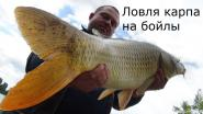 Ловля крупного карпа на бойлы - Fishing For Big Carp