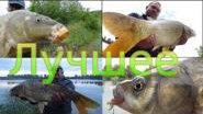 Лучшие моменты рыбалки летнего сезона 2013 года