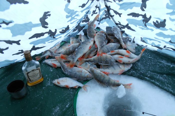 С наступающим 2014 годом,братья и сёстры рыболовы!!!!