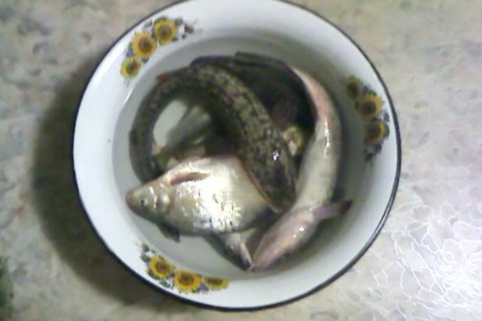Последняя рыбалка перед льдом.