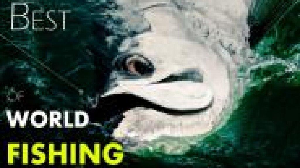 BEST of WORLD FISHING