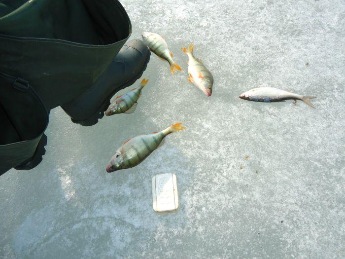 16.04.14. Сартлан рыбки не дал.