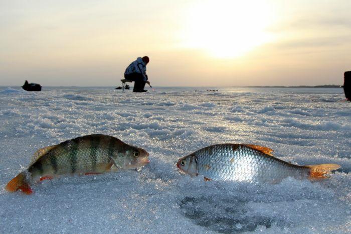 Особенности и разновидности мормышки для зимней рыбалки