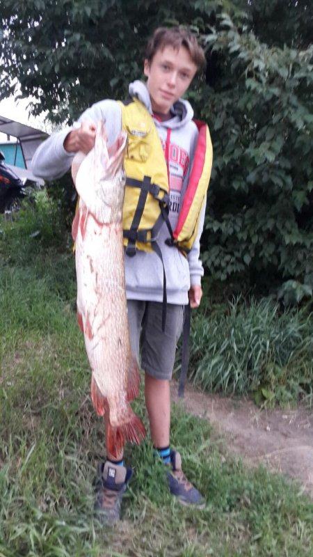 Щука 7,32 кг.  Река Объ