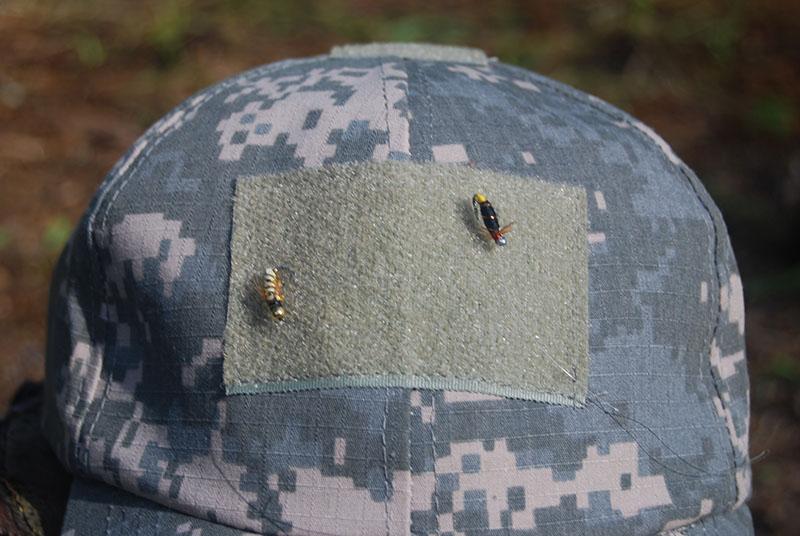 Ходовые мухи