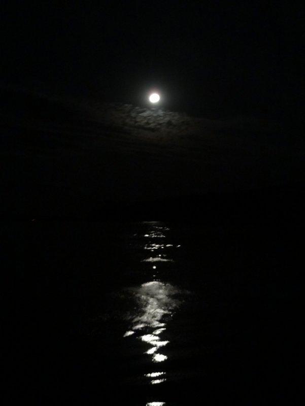 луна и лунная дорожка