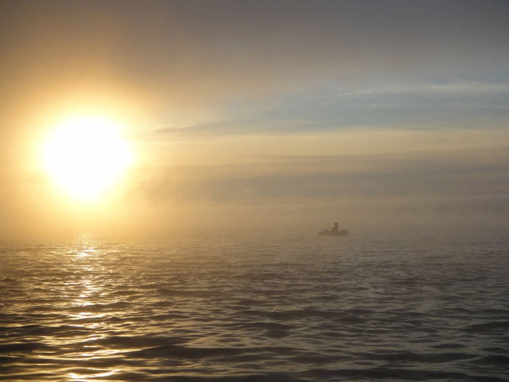 Лёшик в тумане8)