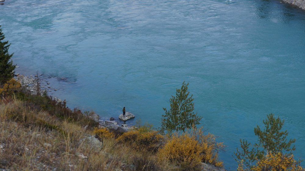 Одинокий рыбак на Катуни