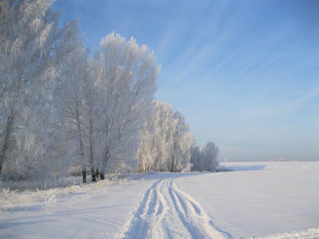 Хороший мороз и прошлогоднее солнце.