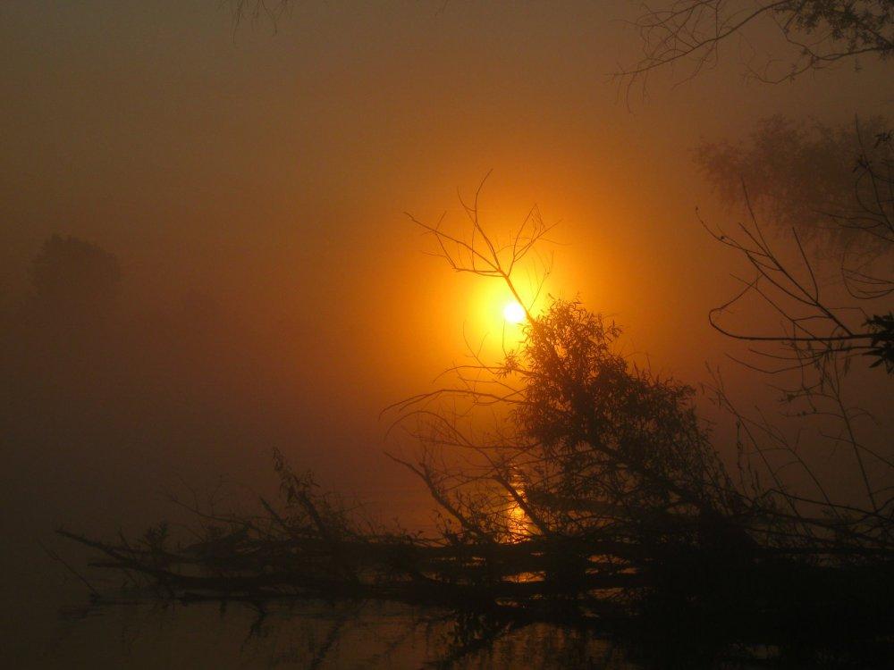 Рассвет в тумане, подарок рыбаку.