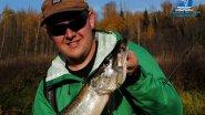 Ловля щуки на спиннинг осенью : малые реки : РД