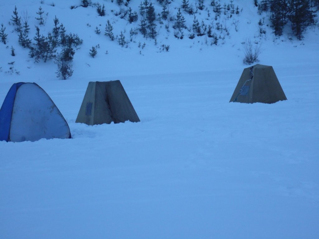 Белоярка, интересные палатки