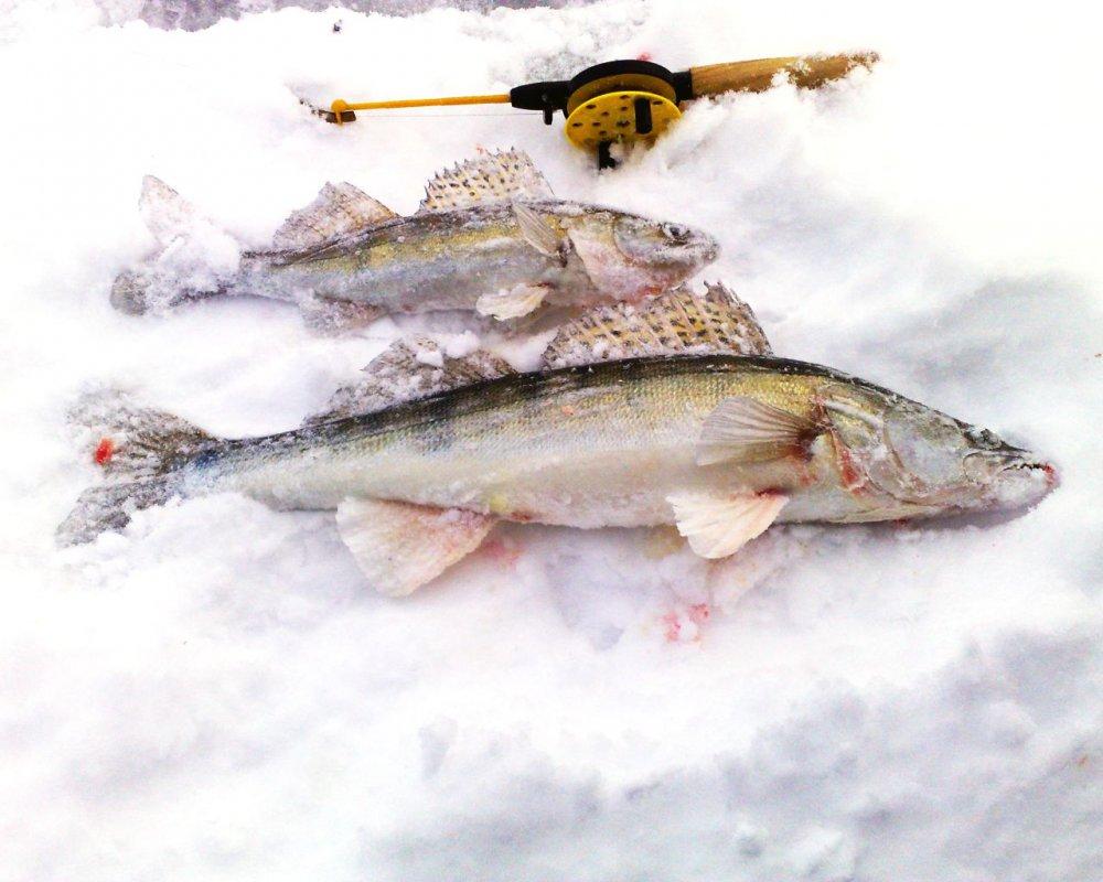 Обское море - март 2012