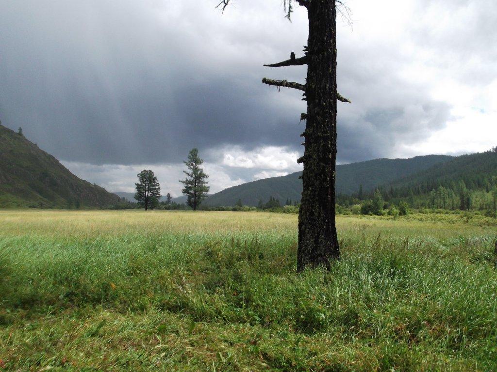 непогода уходит