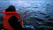 Fishing, trolling, ловим судака на дорожку на Ладоге.