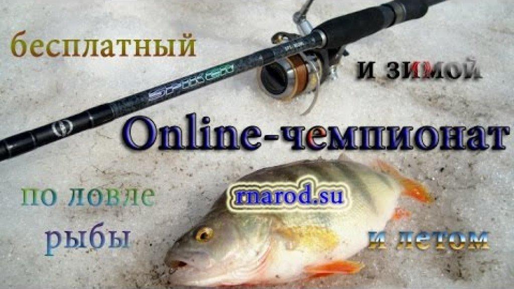 Online-чемпионат от сайта РНарод - ежемесячные бесплатные соревнования по рыбной ловле!