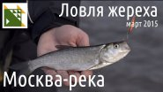 Ловля жереха на Москве-реке ранней весной.