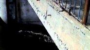 Прорыв дабмы на реке Тула 14.04.2015г
