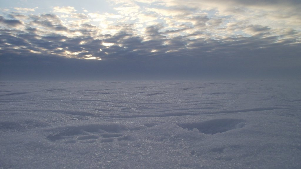 Снежная пустыня ОВХ.